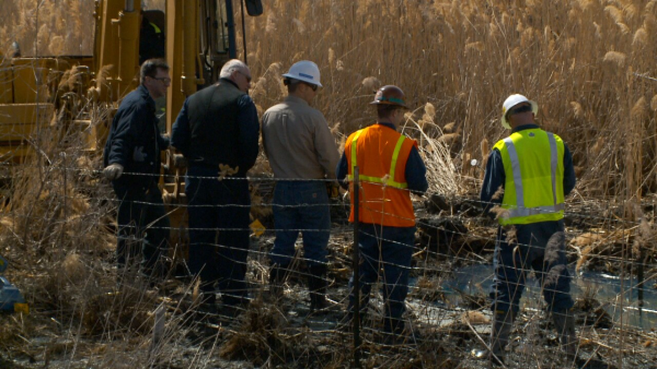 Beavers help stop fuel spill at Willard Bay
