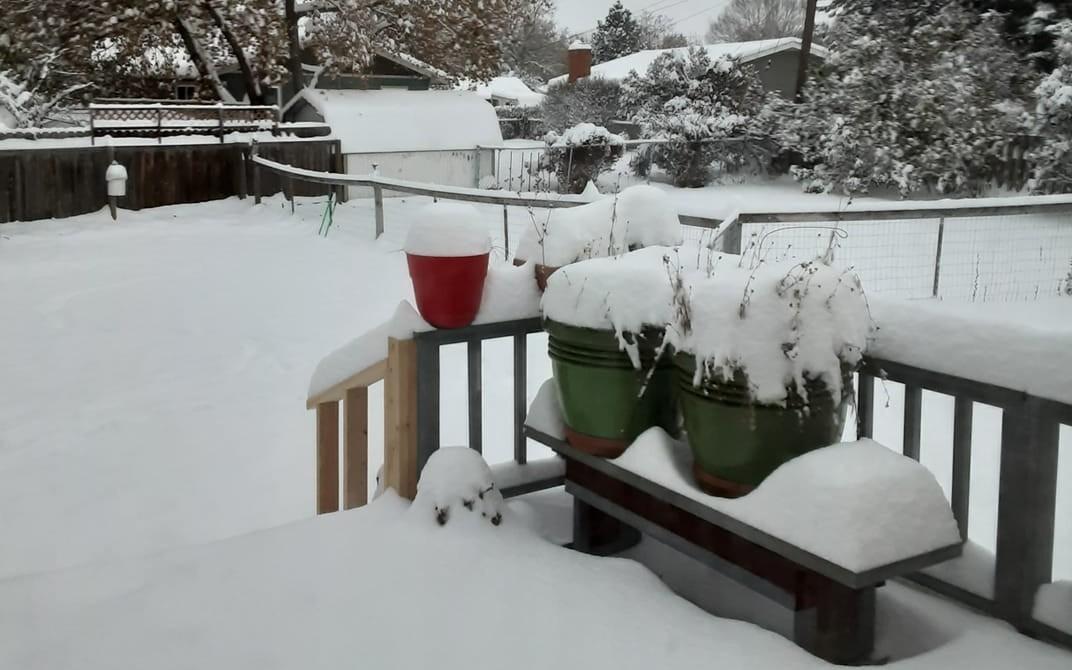 Snow Oct. 24.jpg