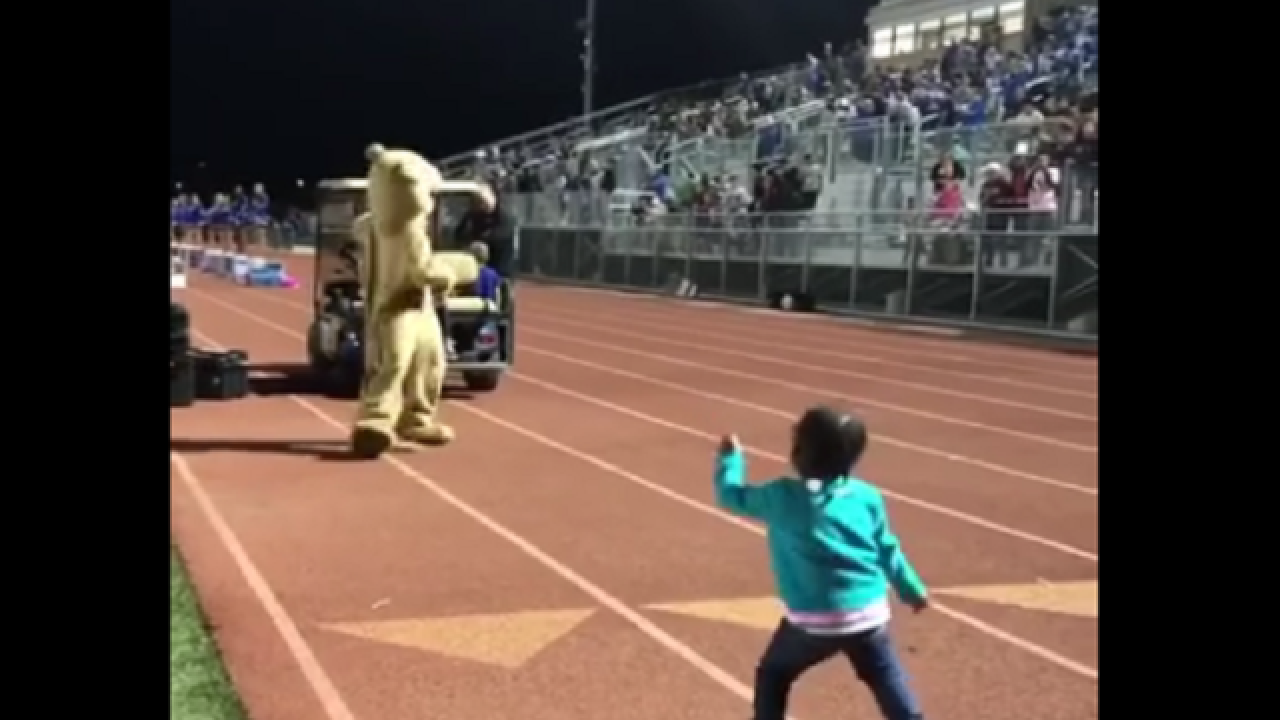 WATCH: Crowd cheers as toddler shows off epic dance moves