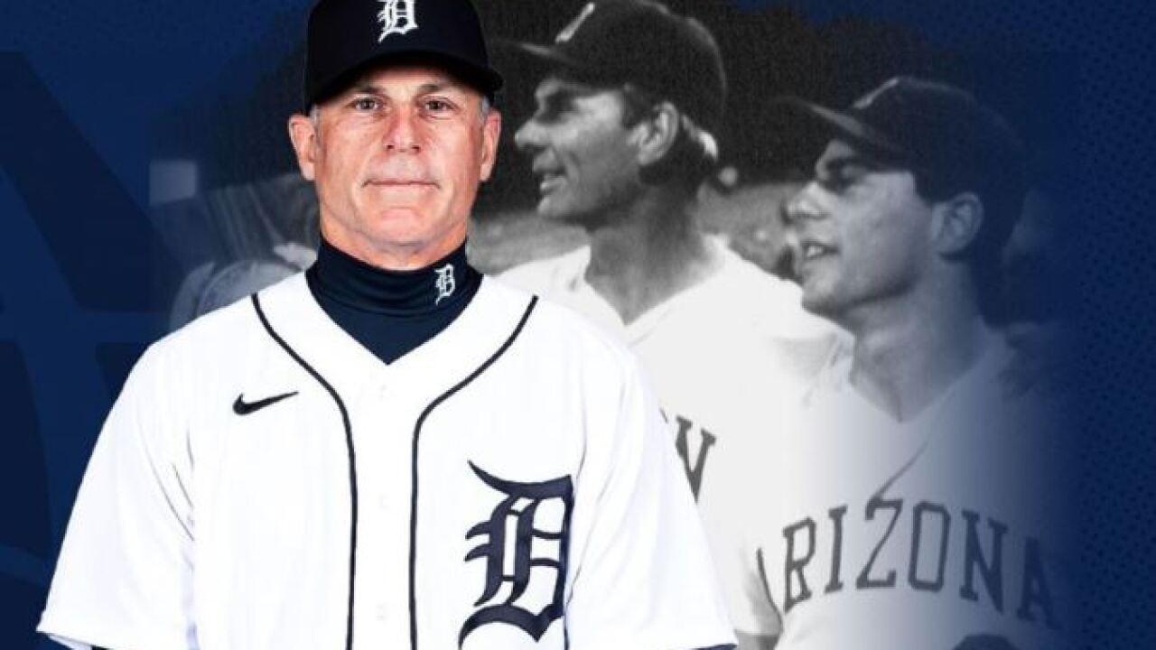 Arizona hired Chip Hale, a former Major League player who won the 1986 NCAA championship as a player at Arizona. Photo via Arizona Athletics.