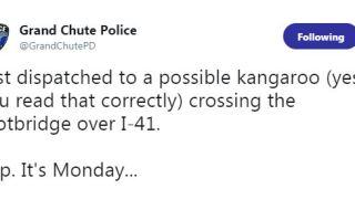 Possible kangaroo reported crossing I-41 footbridge