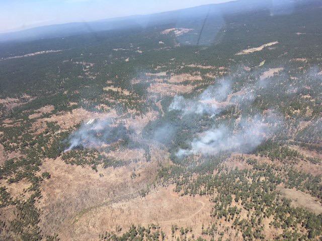 boggy creek fire inciweb.jpeg