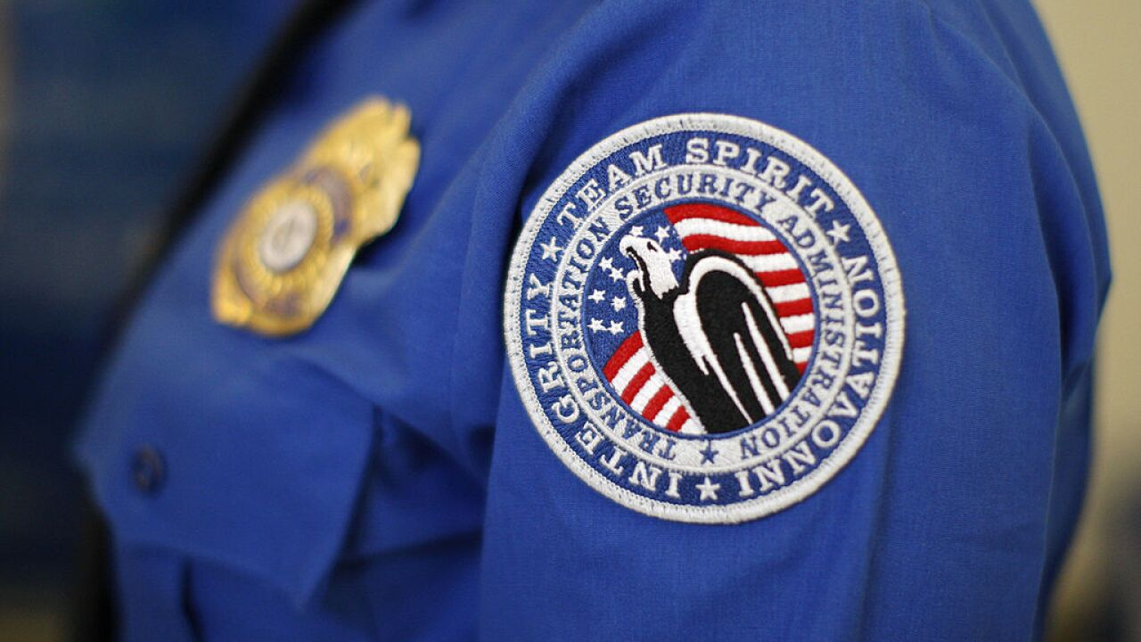 TSA to deploy hundreds, including air marshals, to border