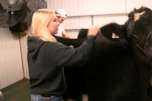 State fair cancellation disappoints 4-H competitors