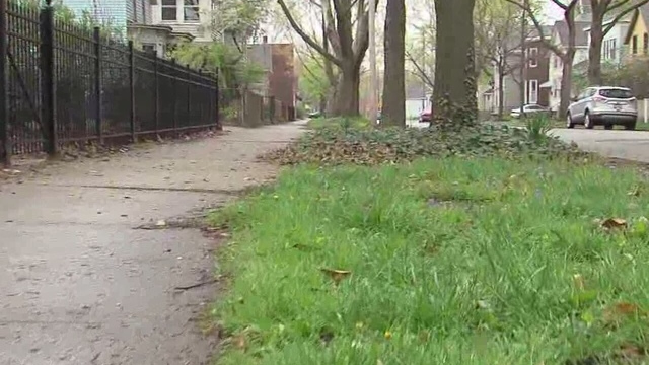 Serial pooper on the loose in Ohio City