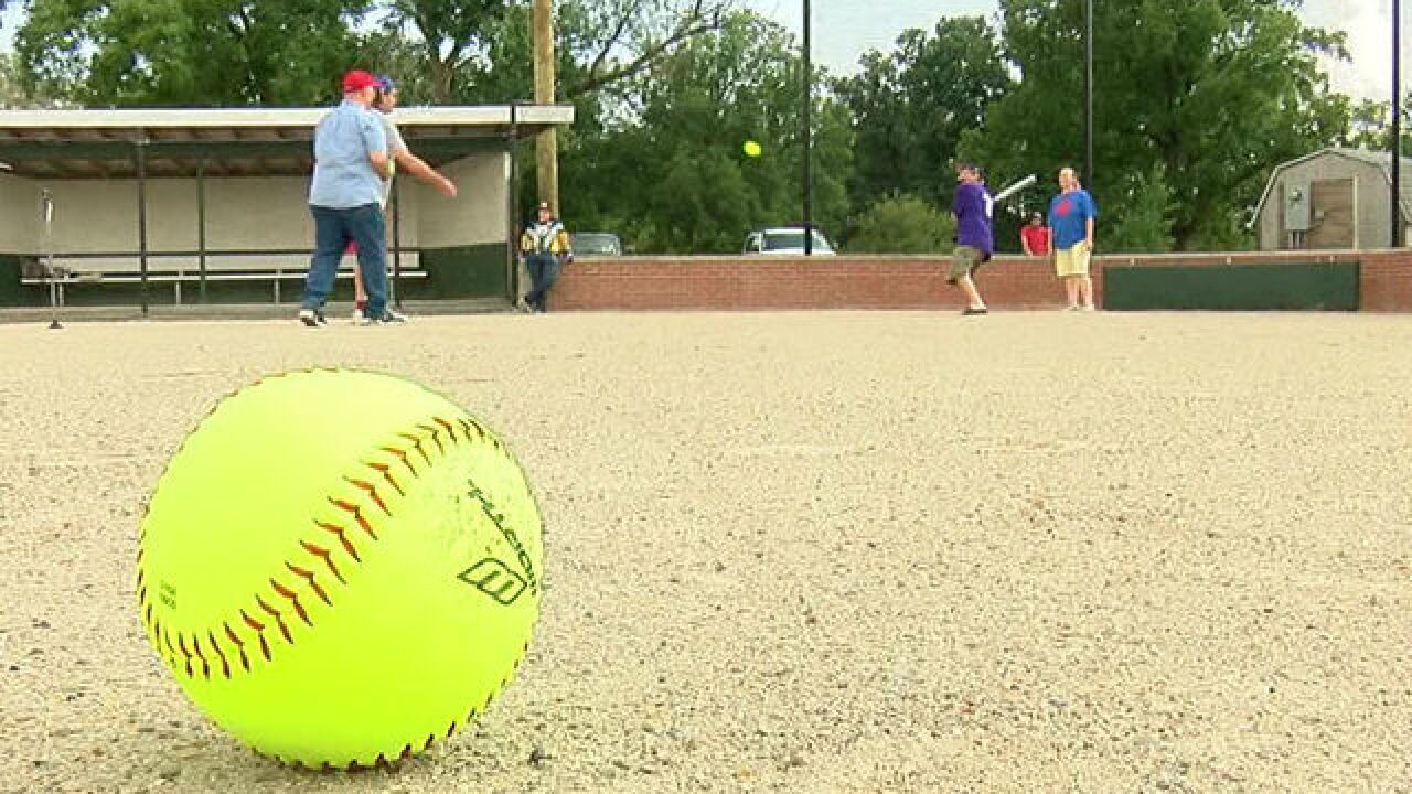 New Castle Miracle League needs help