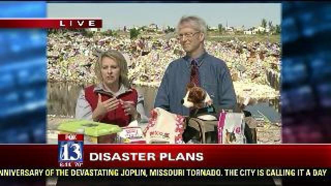 Tips to developing disaster plan that includes pets
