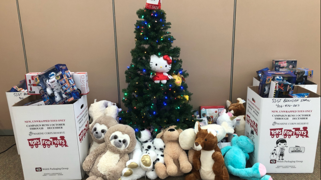 Local credit union collected toys for tots Saturday
