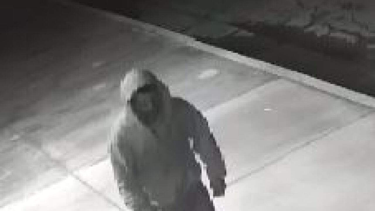 Downtown Burglary Suspect #2.JPG