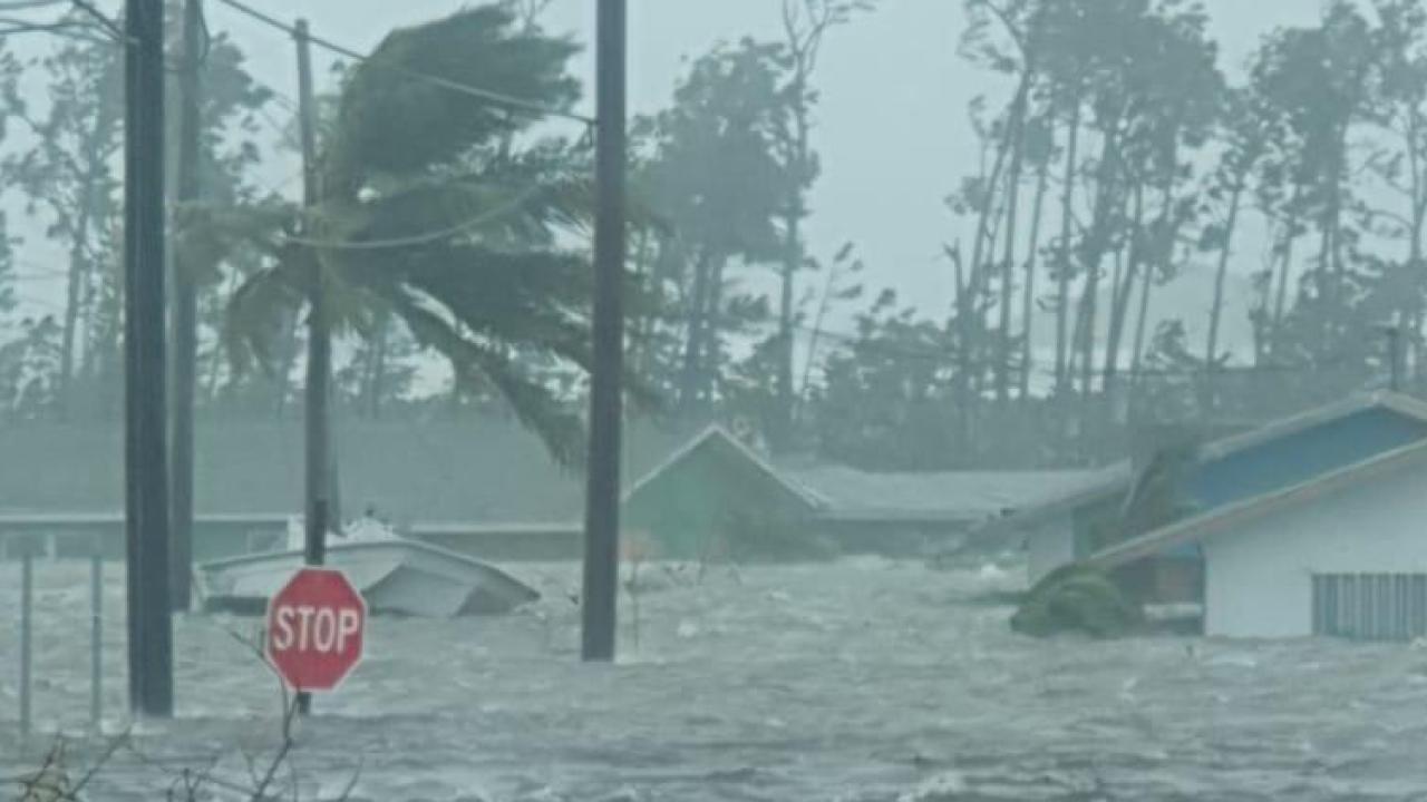 wptv hurricane.PNG