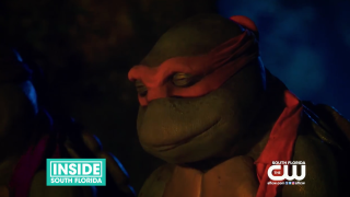 Screen Time: Teenage Mutant Ninja Turtles