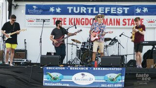 TurtleFest canceled at Loggerhead Marinelife Center in Juno Beach.