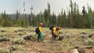 Morgan Creek fire_July 23 2021
