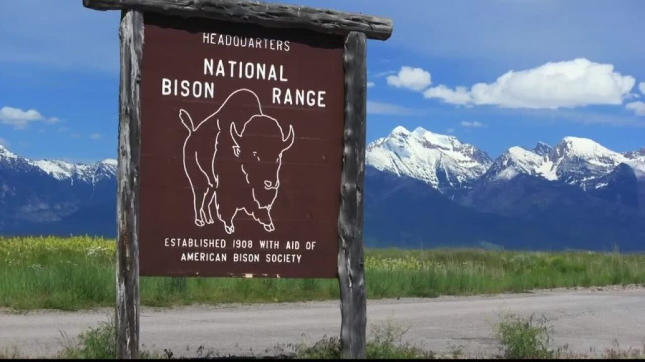 National Bison Range partially reopens to the public