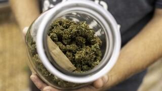 cannabis-reform_49155181511_o.jpg
