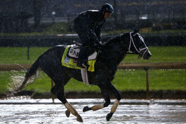 Photo gallery: Meet the horses running the Kentucky Derby