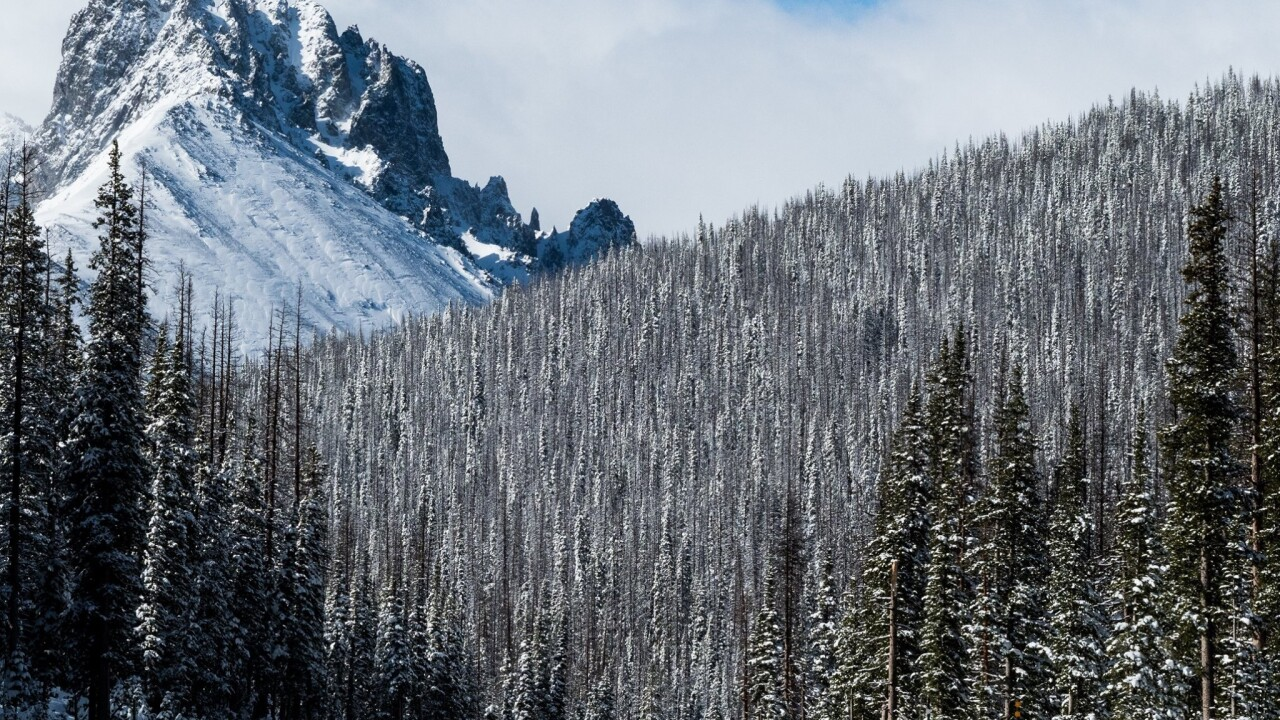 Colorado got a foot of snow during the first 24 hours of summer
