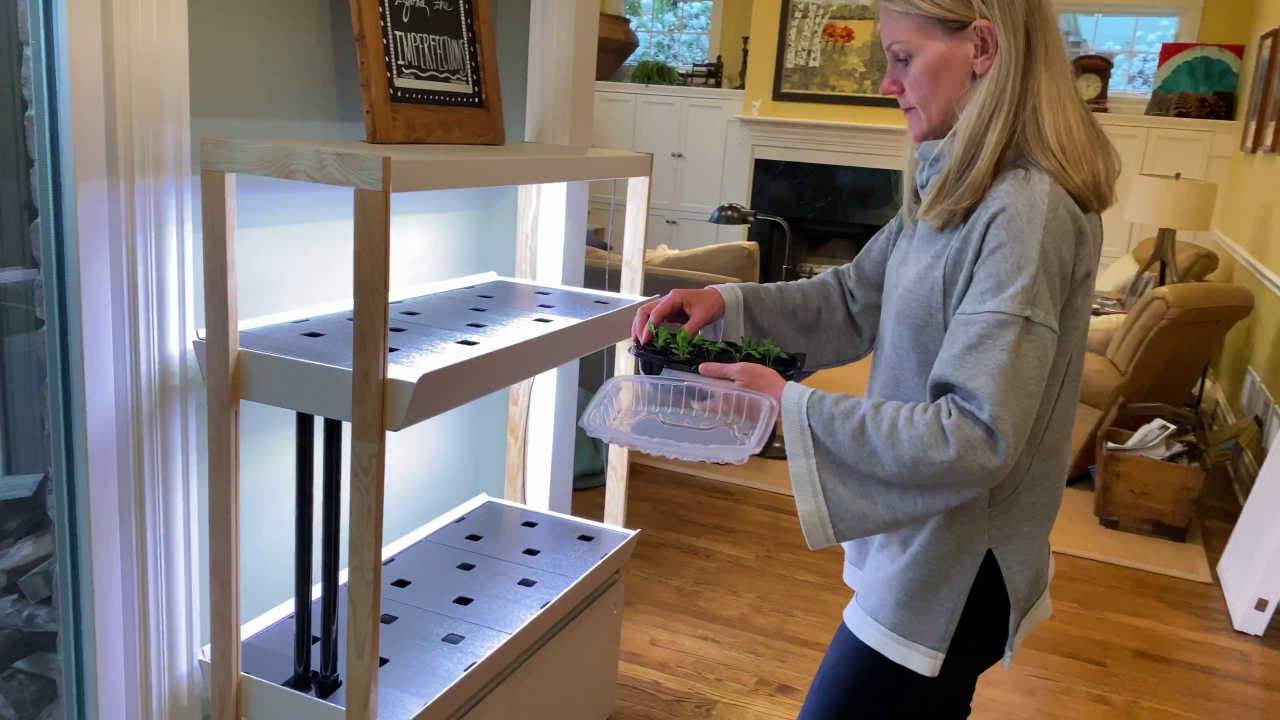 Some turning to hydroponics during outbreak to grow produce, reduce trips to grocery