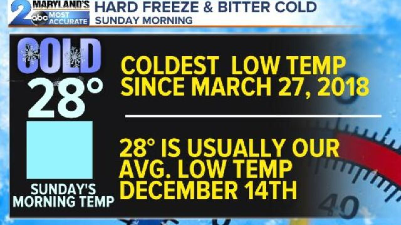 HARD FREEZE-Coldest Air So Far This Year