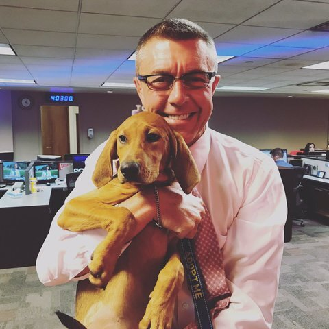 Doggos and puppers invade the TODAY'S TMJ4 newsroom