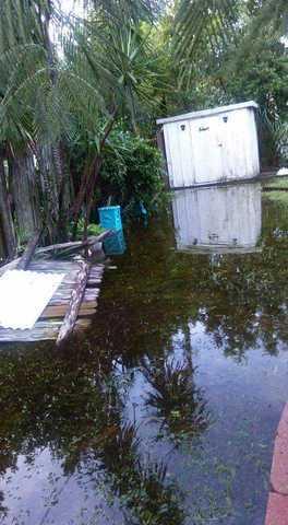 Photos: Irma damage scenes in Sarasota, Manatee counties