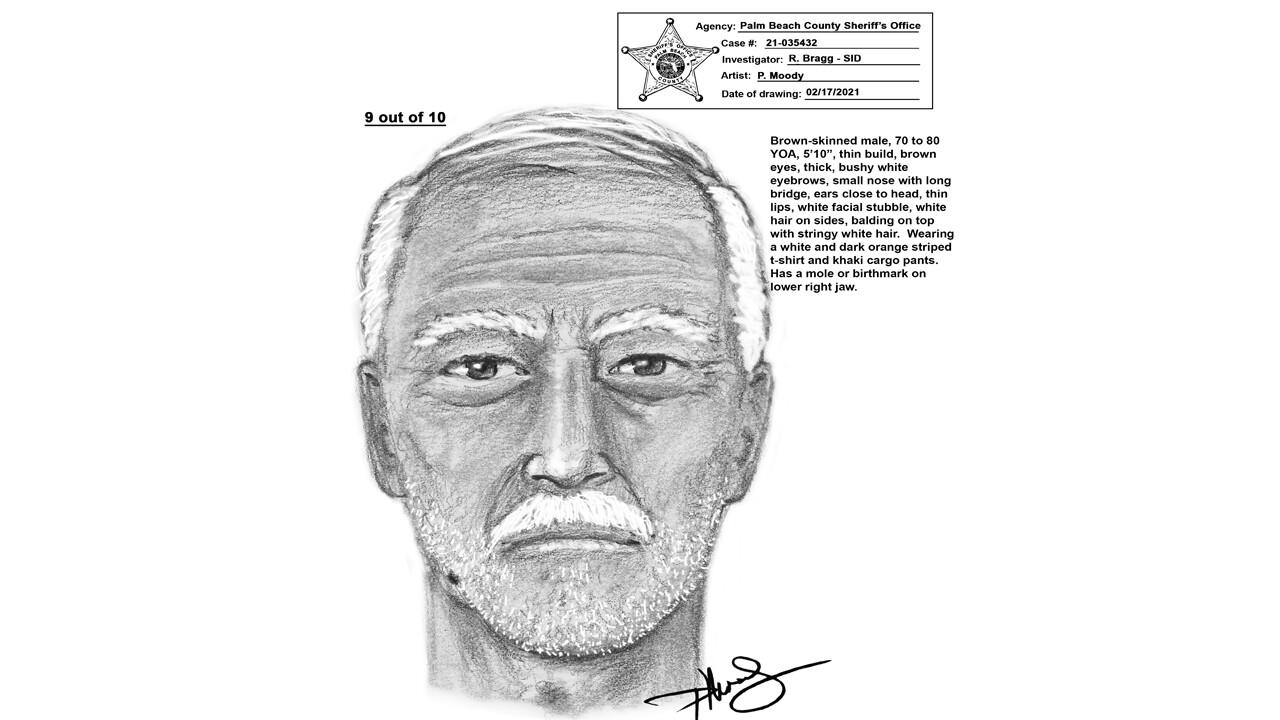 Sketch of John Prince Park rapist