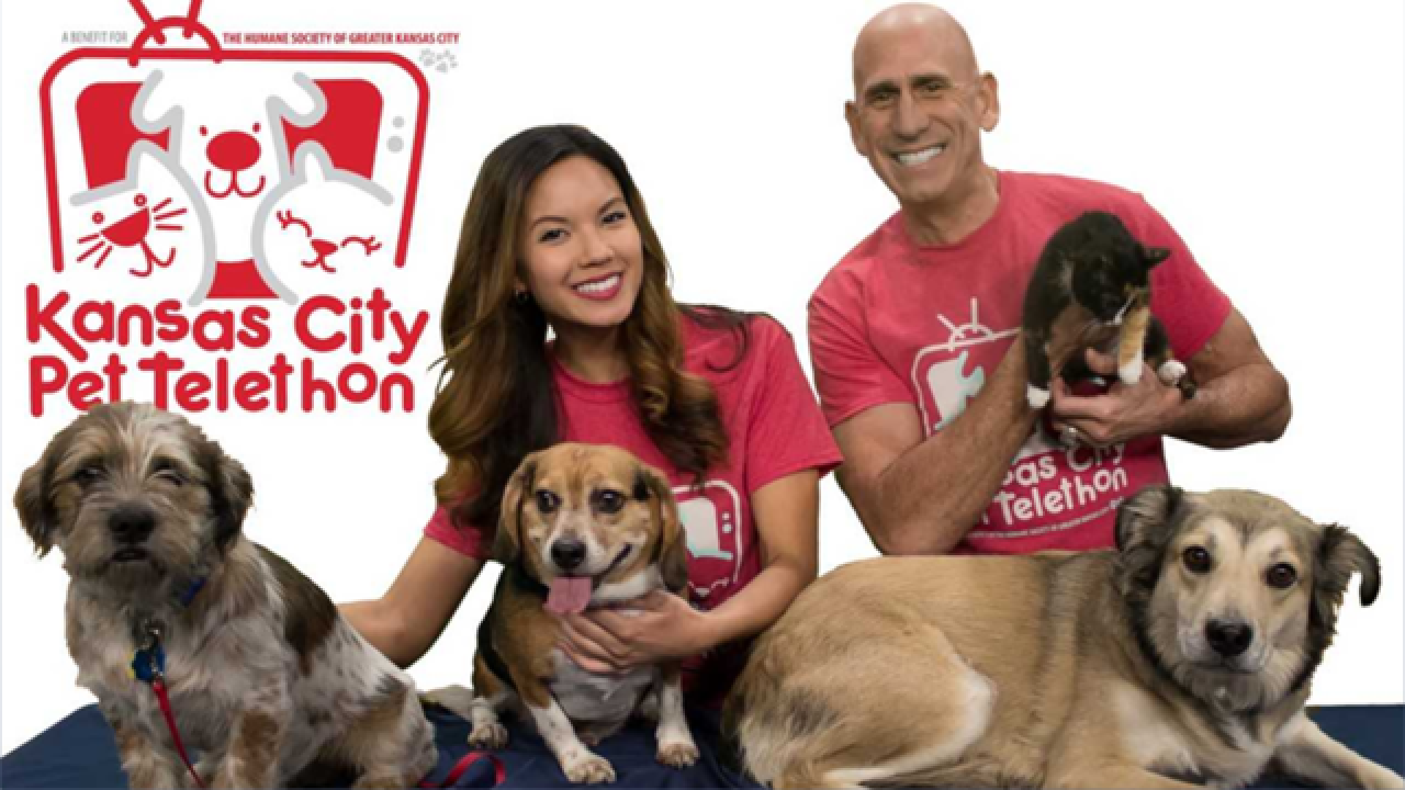 18th Annual Kansas City Pet Telethon held on Sunday