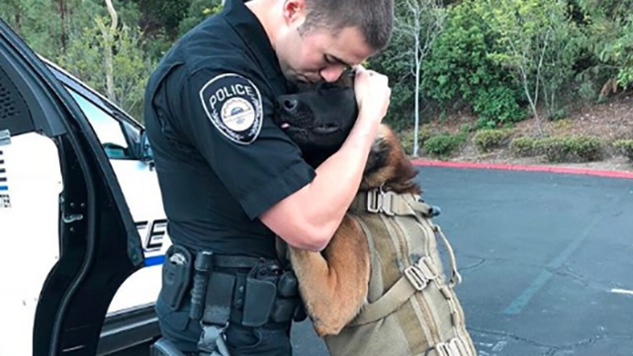 K9 Jester says goodbye to former partner