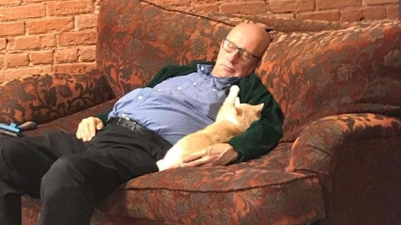 Green Bay cat shelter volunteer goes viral