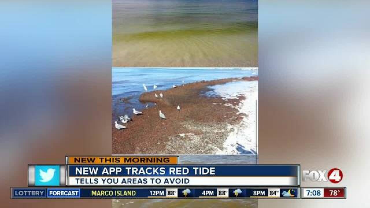 New app helps beachgoers track red tide
