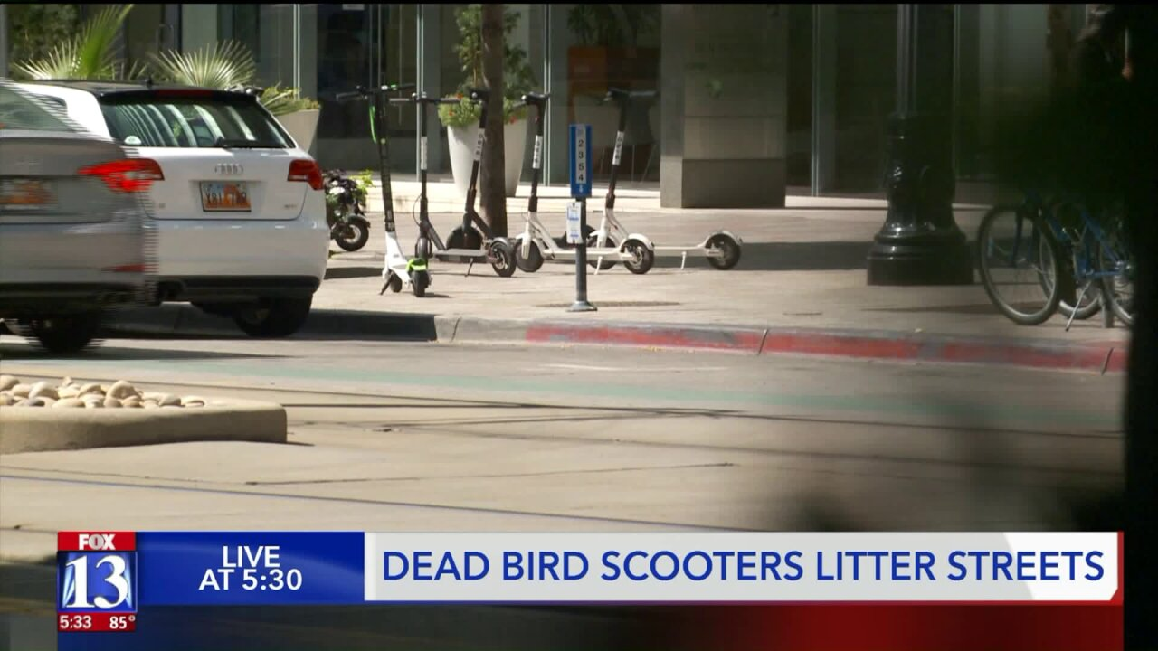 Dead Birds litter SLC streets, electric scooters 'damaged' and inoperable