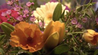 gardening sales