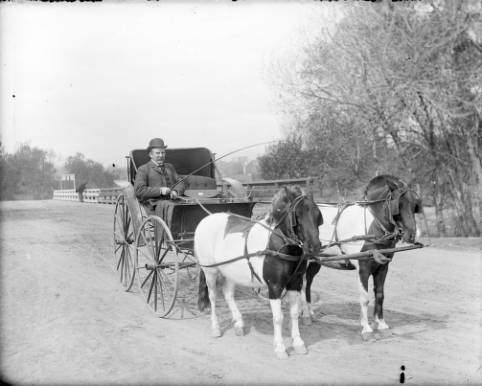 Man_in_a_horsedrawn_carriage_on_the_Alameda_bridge.jpg