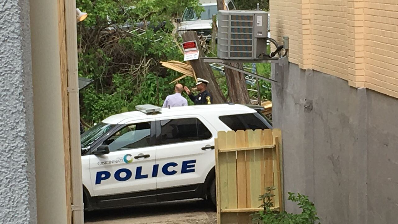 Man killed by falling tree during tree trimming in East Price Hill
