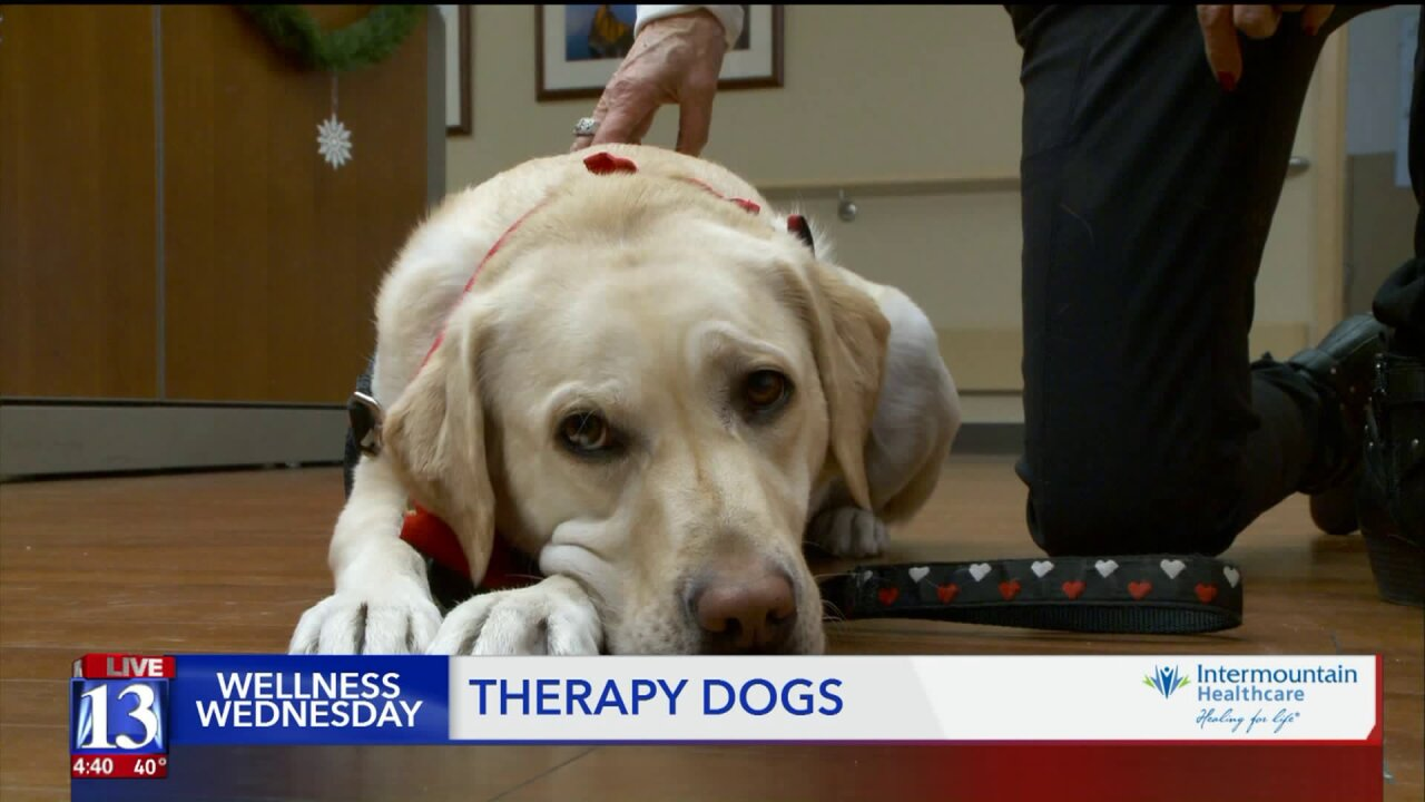 Wellness Wednesday: How pets are helping patientsheal