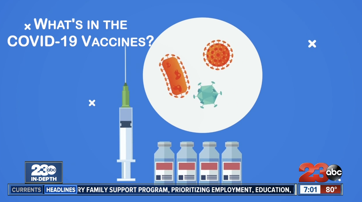 What's in the COVID-19 vaccine