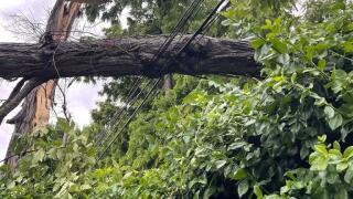 evergy downed power lines.jpeg
