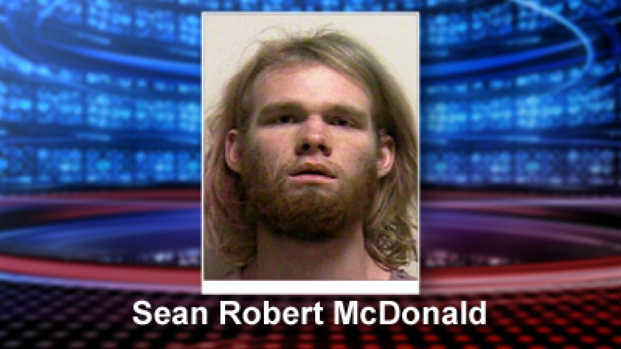 Oregon man accused of bringing 6 kinds of drugs, 3 minors to Utah's HoliFestival