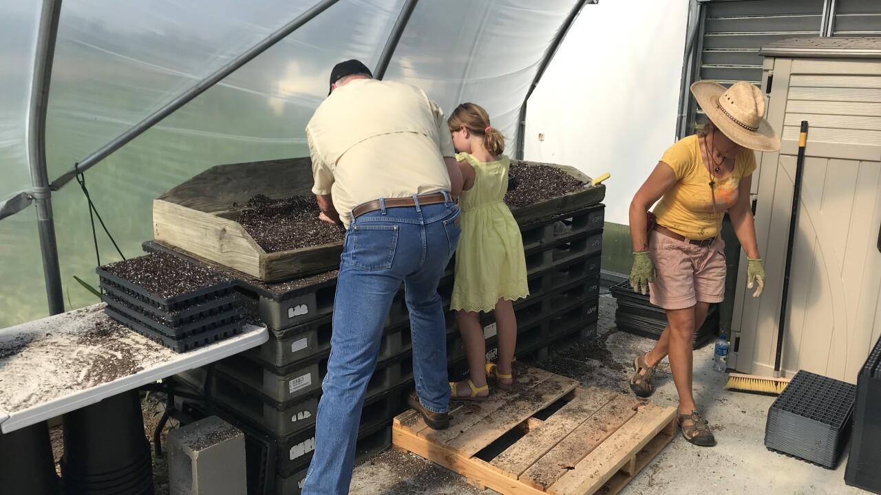 Kansas hemp farming greenhouse.jpg