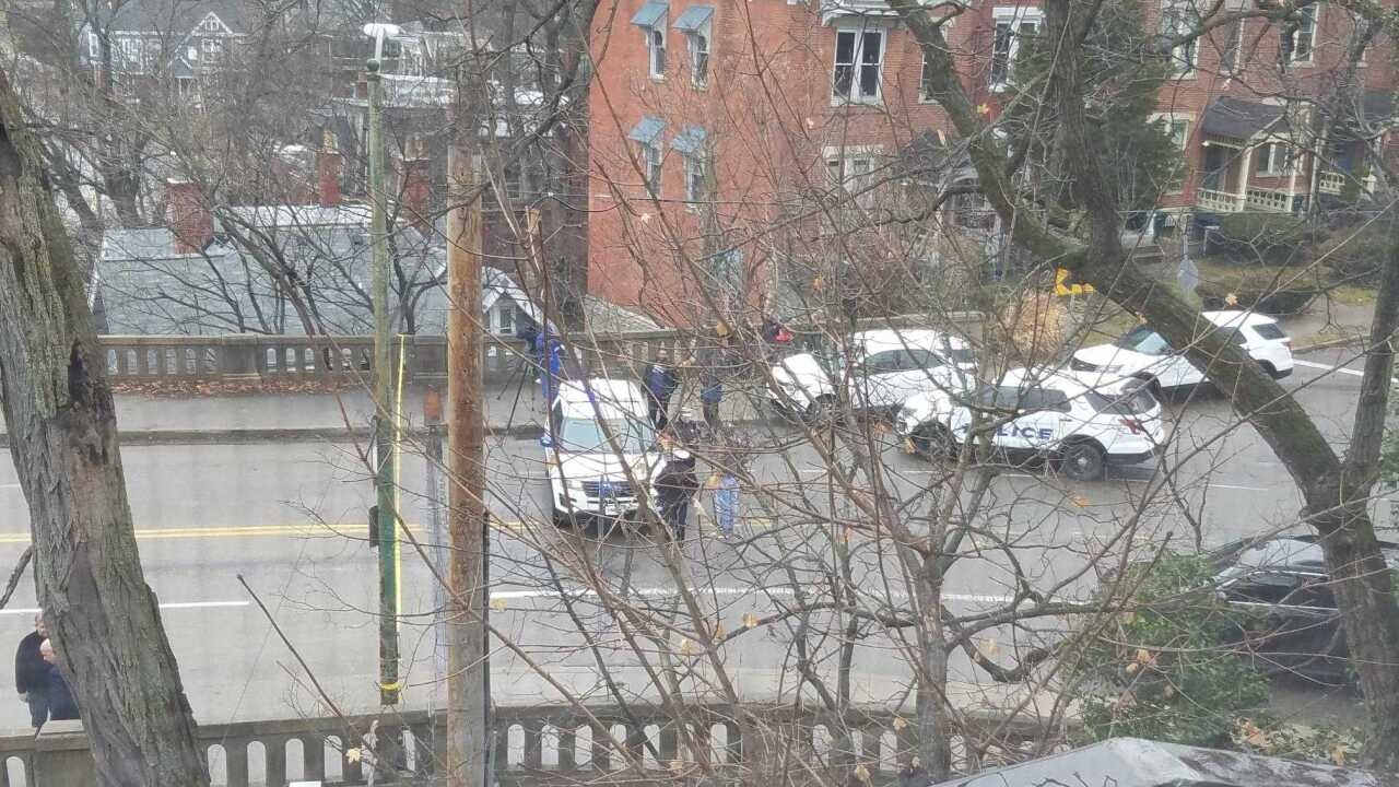 Police activity in Eden Park