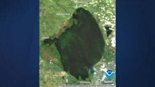 A satellite image of algae blooms on Lake Okeechobee on May 11, 2021.jpg