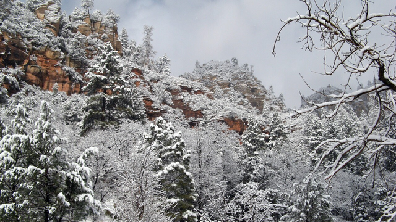SNOW! Winter wonderland escapes in Arizona