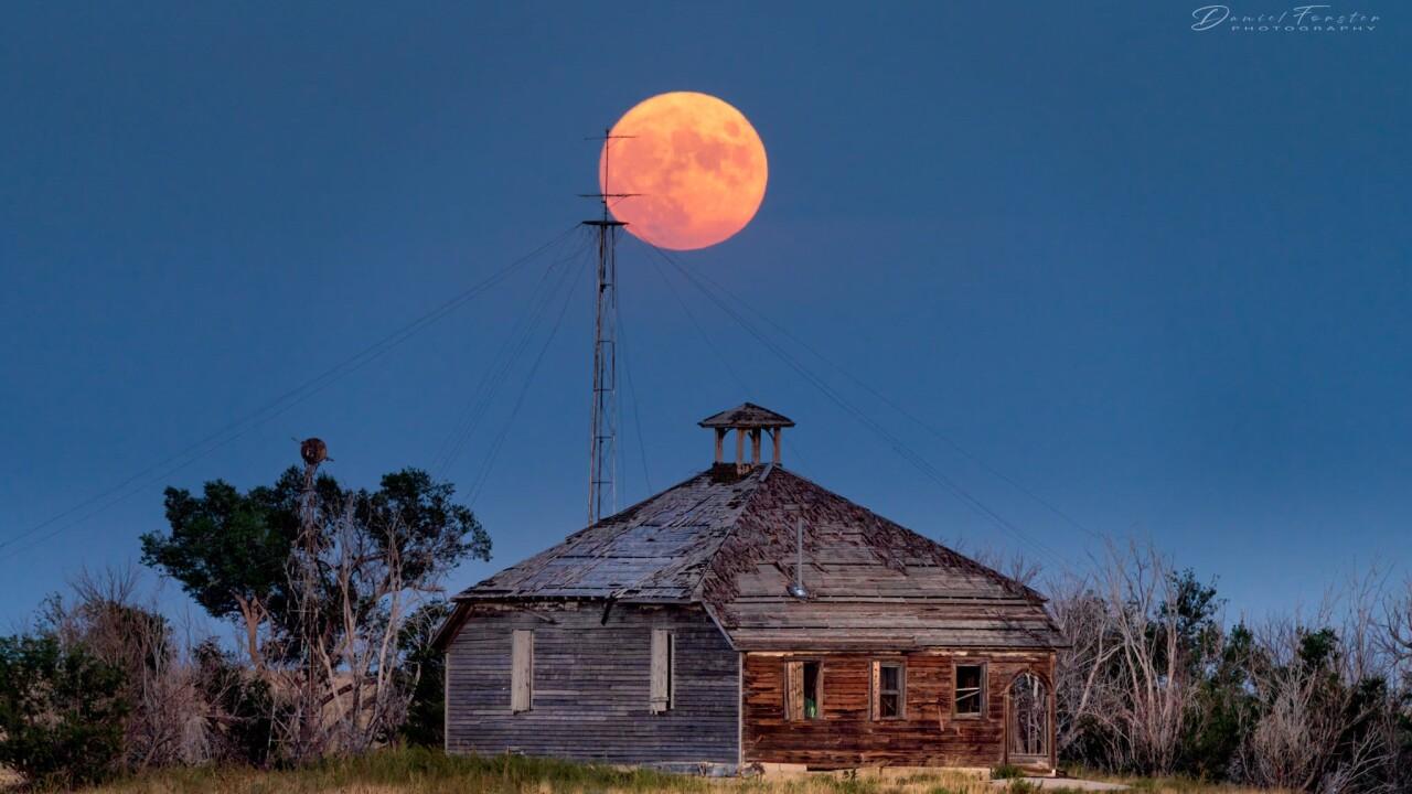 Daniel Forster August full moon