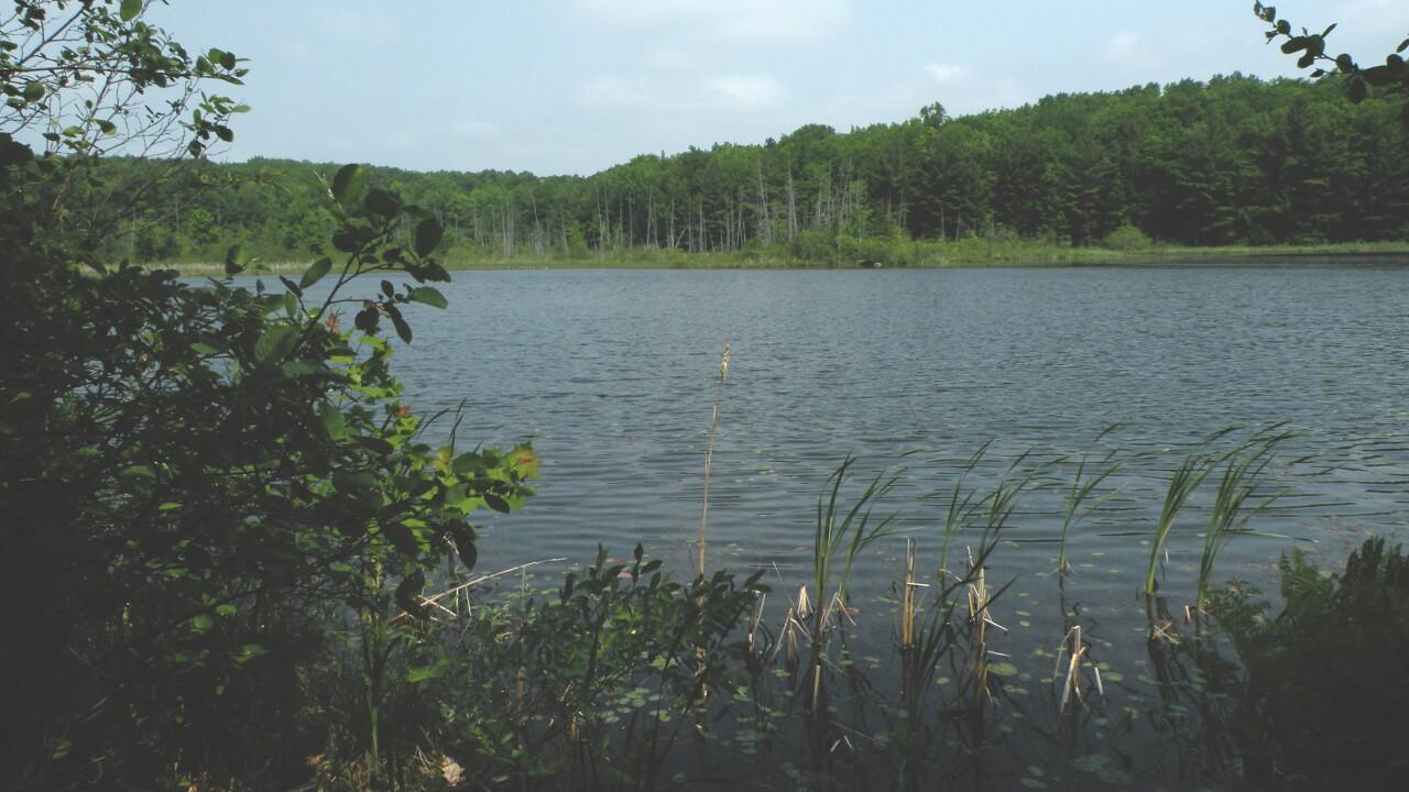 Loda Lake National Wildflower Sanctuary
