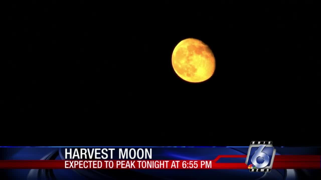 Harvest moon coming tonight