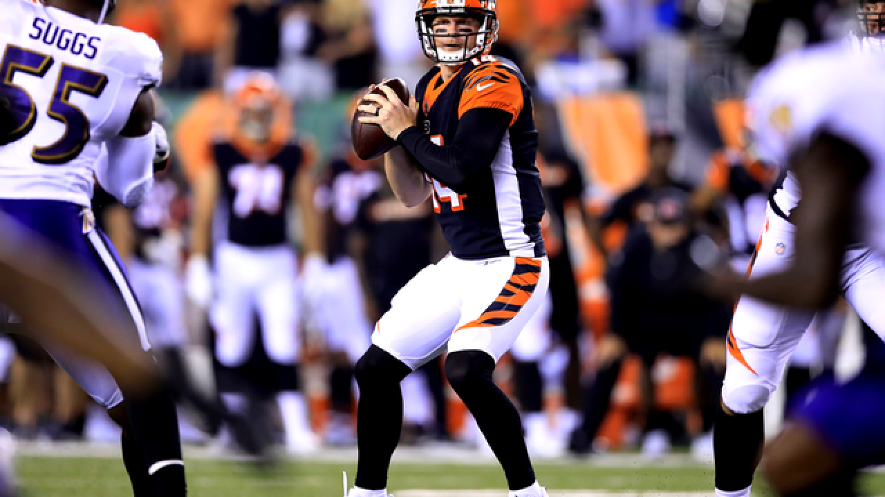 Bengals' Andy Dalton back in comfort zone in new offense
