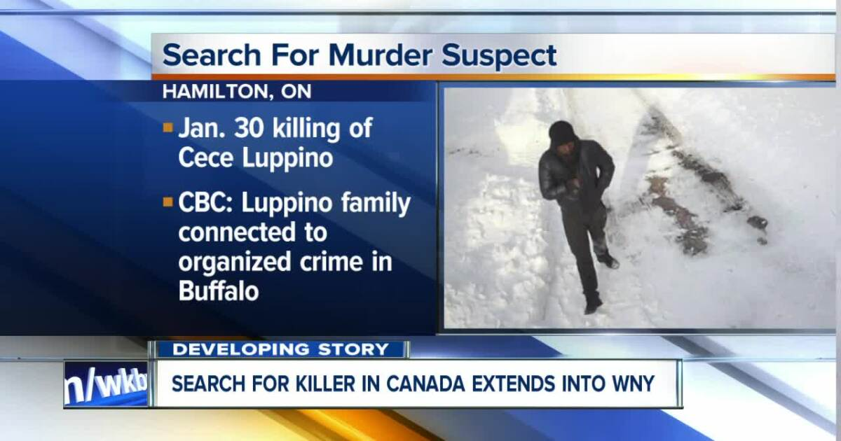 search for suspect in murder with mob ties stretches from