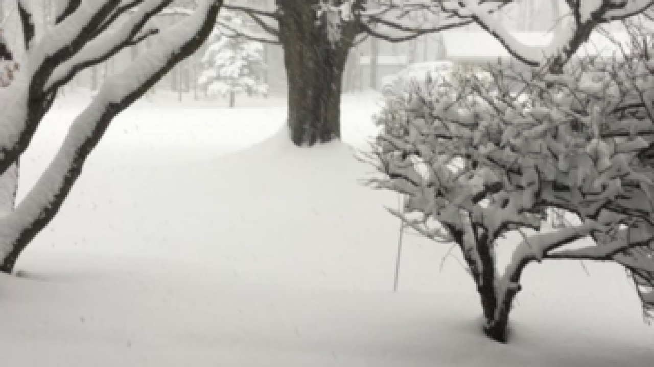 GALLERY: Snow across WNY
