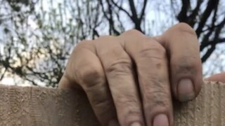 'Elderly folks ... should not be fenced in.' Legislation offers protection in MI guardianship system