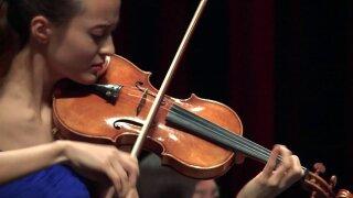 Violin-1.jpeg